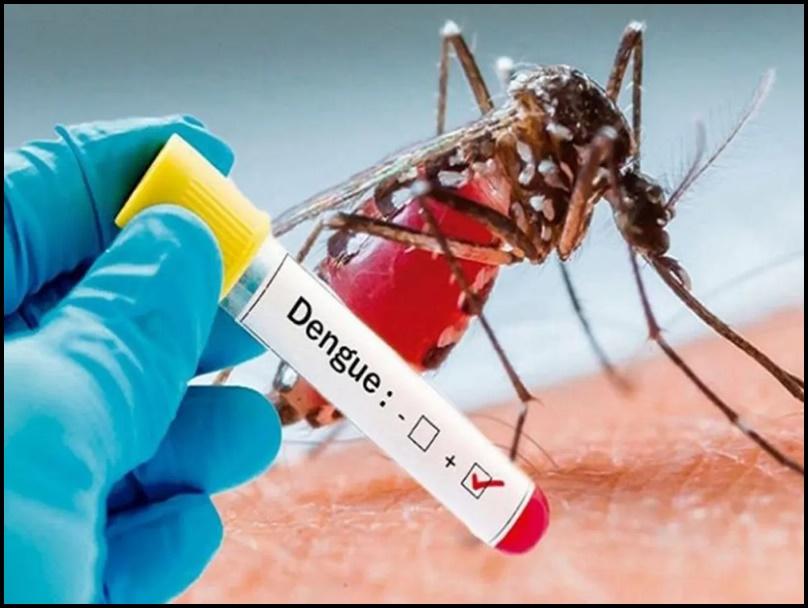 Dengue हो गया तो घबराए नहीं, यहां पढ़ें तेजी से ठीक होने के उपाय