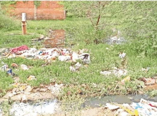 टीकमगढ़: एक दिन में 467 कंटेनरों और 77 घरों की हुई जांच, 26 जगह मिला डेंगू का लार्वा
