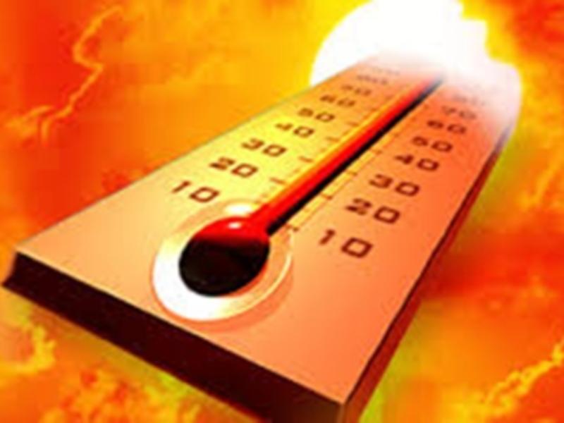 MP Weather Update: मध्य प्रदेश में गायब हुई ठंड, धूप के तेवर और तीखे होने के आसार