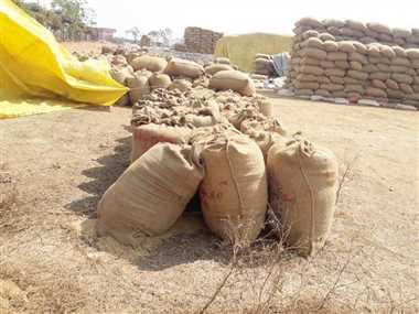 संग्रहण केंद्रों में 11 लाख क्विंटल धान, दुर्ग के मिलर उठा रहे हैं राजनांदगांव जिले का धान