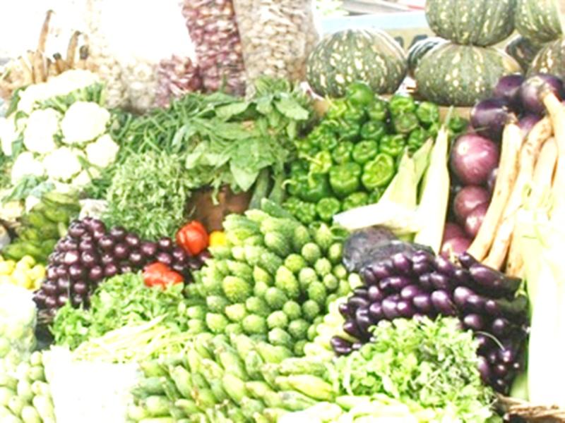Minimum Support Price of Vegetables in Madhya Pradesh: किसान बोले - सब्जियों के समर्थन मूल्य के साथ कोल्ड स्टोरेज की क्षमता भी बढ़ाएं
