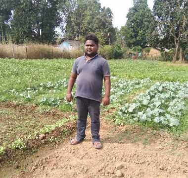 Jagdalpur News : धान के साथ उद्यानिकी फसल से बढ़ी आमदनी