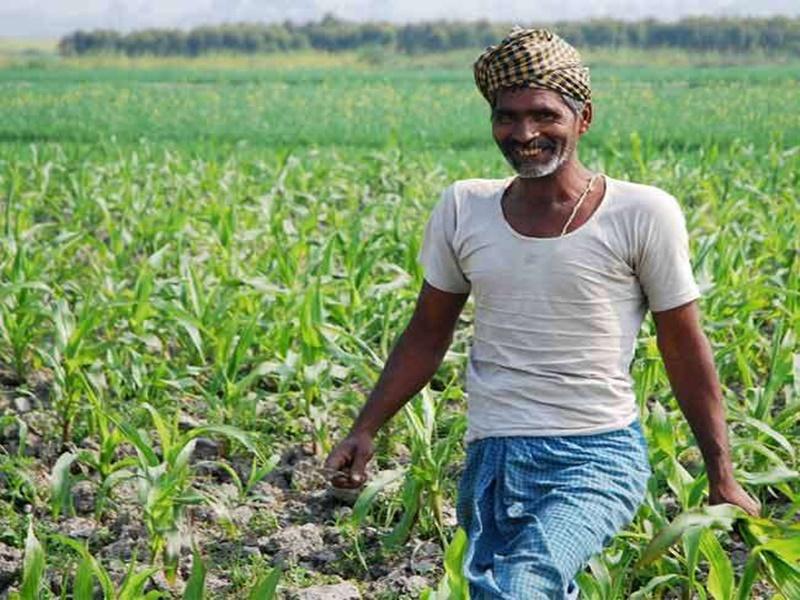 मध्य प्रदेश में डेढ़ लाख किसानों ने एक जमीन पर मांगा दो बार फसल बीमा क्लेम