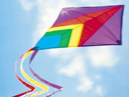 Indore News: पतंगबाजों ने पतंगों से किया आसमान को सतरंगी