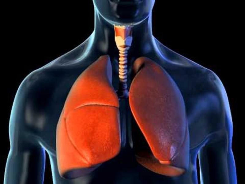 Breathing Exercises: जानिए क्या होती है डायाफ्रैगमैटिक ब्रीदिंग, फेफड़ों को मजबूत करने में करती है मदद