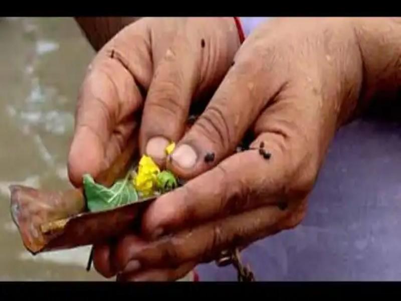 Sarva Pitru Amavasya 2021: सर्वपितृ अमावस्या पर करें इस चालीसा का पाठ, पितर होंगे खुश