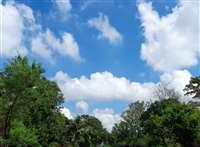 Bilaspur Weather Update: न्यायधानी में सुबह से चल रही ठंडी हवाएं, मौसम हुआ सुहावना