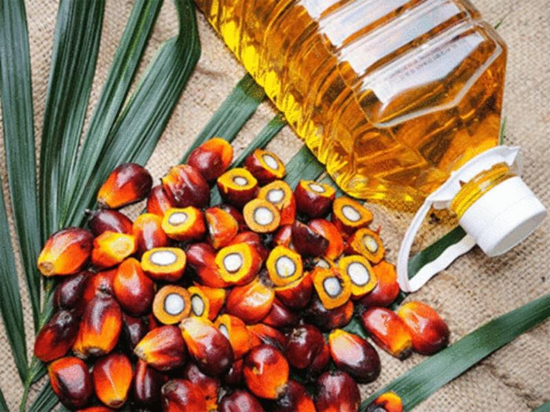 1 दिसंबर से देश में पाम तेल का आयात एक लाख टन प्रति माह बढ़ने की संभावना