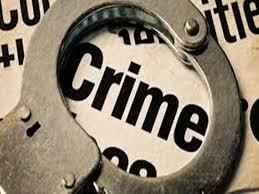Bilaspur Crime News: सो रहे पति पर लोहे के पाइप से हमला, बचाने आई सास को दी धमकी