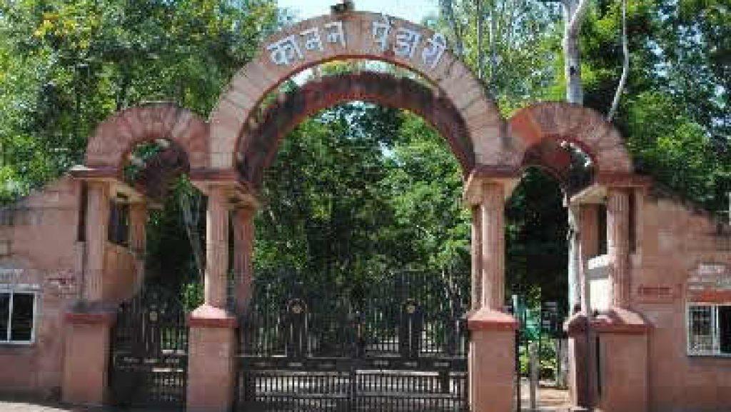 Bilaspur Kanan Pendari News: बनने लगा कानन पेंडारी सफारी का द्वार, दो अक्टूबर से पर्यटक ट्रेन से करेंगे भ्रमण