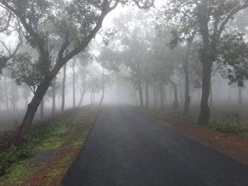 Weather Update Surguja: 10 दिनों में आठ डिग्री लुढ़का पारा, उत्तर छत्तीसगढ़ में बढ़ने लगी ठंड