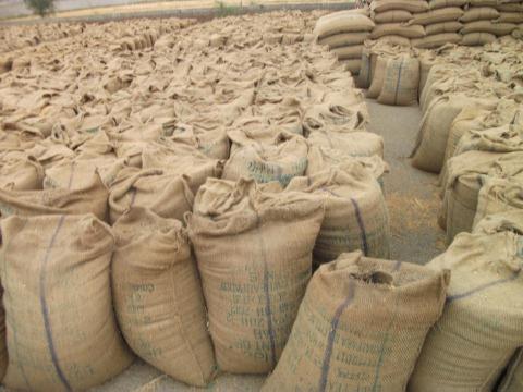 Bilaspur News: कोरोना ने बदला नियम, सात दिन तक ही रहेगी धान खरीदी टोकन की वैधता