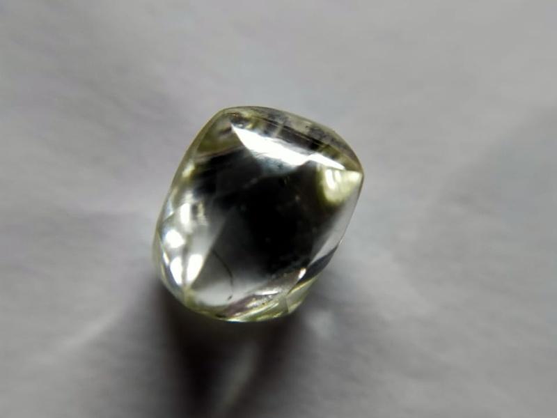 Panna News: पन्ना की रत्नगर्भा धरती से फिर चमकी मजदूर की किस्मत, मिला नायाब हीरा