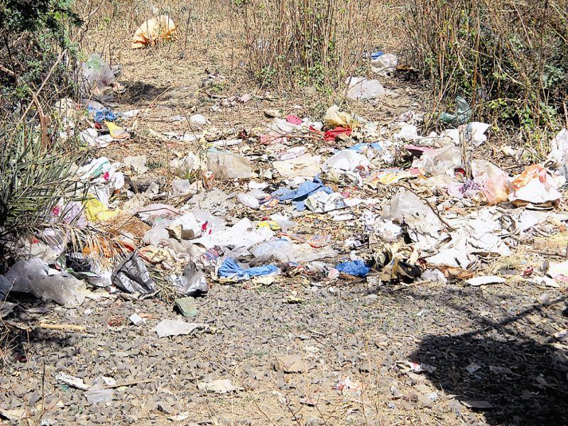 ग्वालियर में गली मोहल्लों में नहीं लग रही झाडू, कचरा तक नहीं उठ रहा