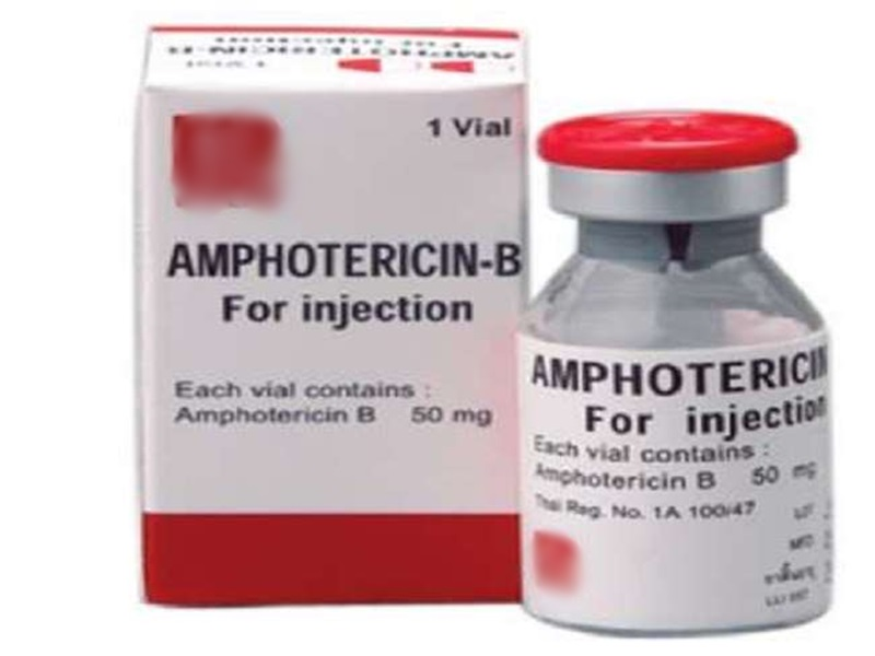 Black Fungus in Indore: Amphotericin-B injection necessary to treat black fungus in Indore