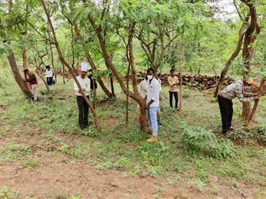 जंगल को बचाने पर्यावरण प्रेमी करेंगे सद्बुद्धि यज्ञ