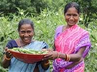 बिहान समूह से जुड़कर बदली महिलाओं की जीवनशैली