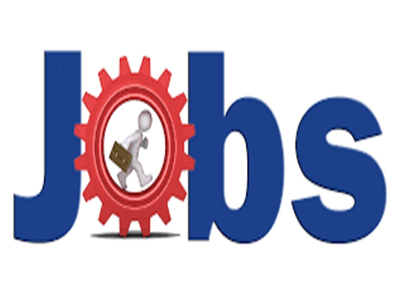 Festive Job : 1.15 लाख लोगों को देगी रोजगार ये कंपनियां, त्योहारी सीजन में कर ले तैयारी