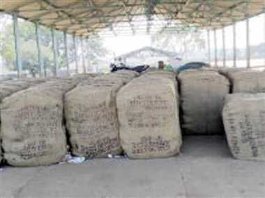 दुर्ग के पाटन ब्लाक के 35 समितियों में धान बेचेंगे 40,382 किसान