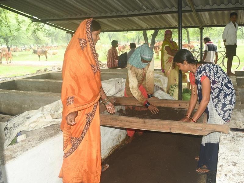Inspiring News : महिलाओं ने बना डाले छह लाख रुपये के वर्मी कंपोस्ट