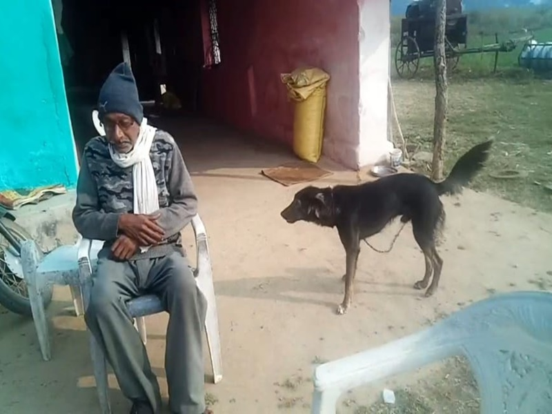 Chhindwara News: Kisan gets half of property in the name of her dog, angry with the behavior of sons
